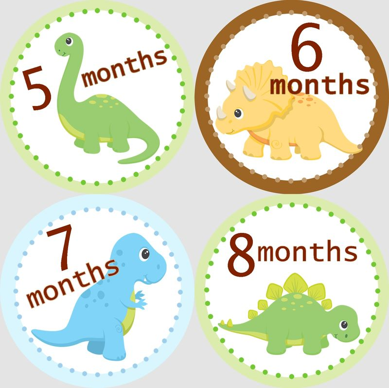 Baby Dinosaurs Monthly Birthday Stickers Snugglebug Baby