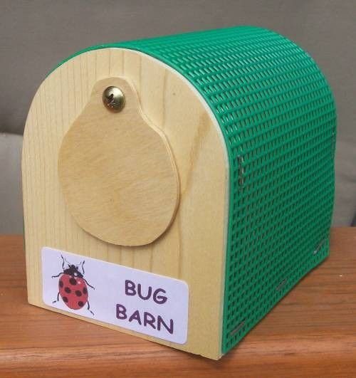 Insect Keeper Bug Barn Ss Woodcraft