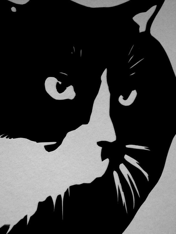 Cat Silhouette Art Black And White Cat Art Tuxedo Cat Art Cat Wall Art Feline Wall Art Kitty Art Cat Papercutting Cat Papercut Vibrant