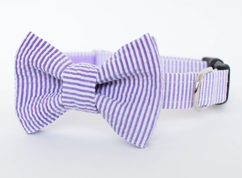 e9190635675e Dog Bow Tie Collar - Purple Seersucker - product images of