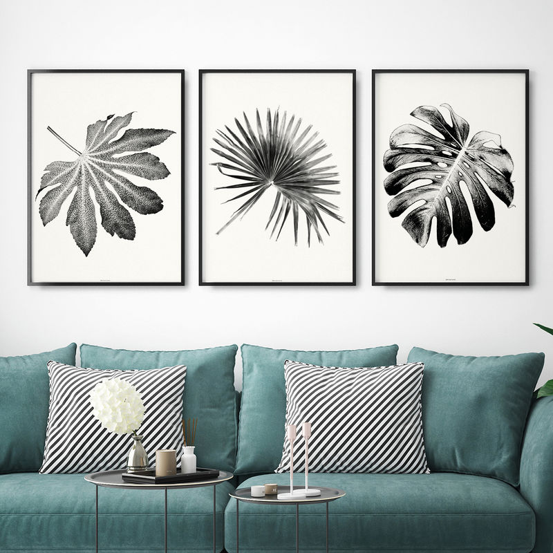 Set of 3 botanical art prints black and white wall art living room art