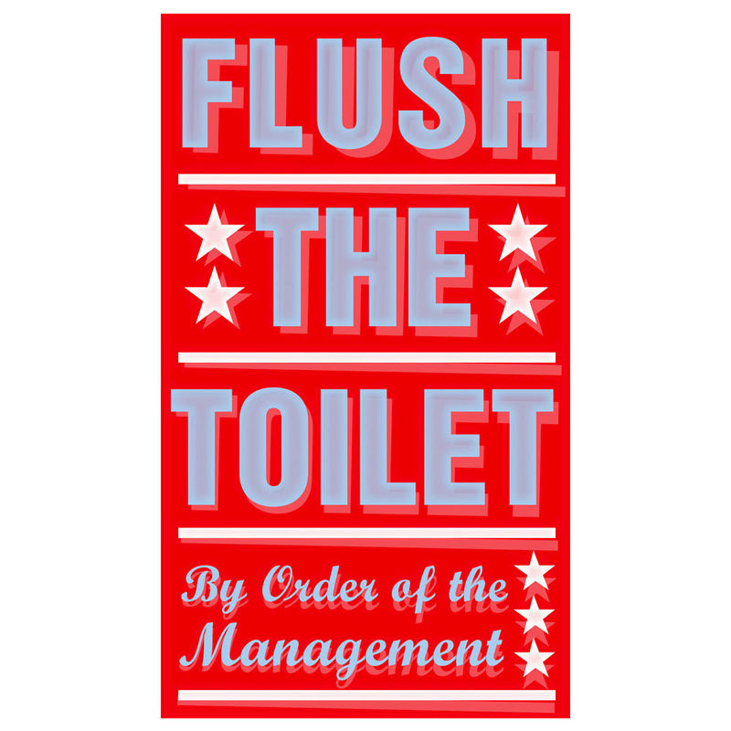 Bathroom Art For Kids Flush The Toilet Print 6 X 10 Wall Bathrooms Sign Prints Room