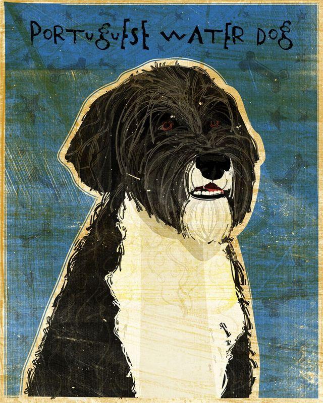 Portuguese Water Dog Print - John W. Golden Art