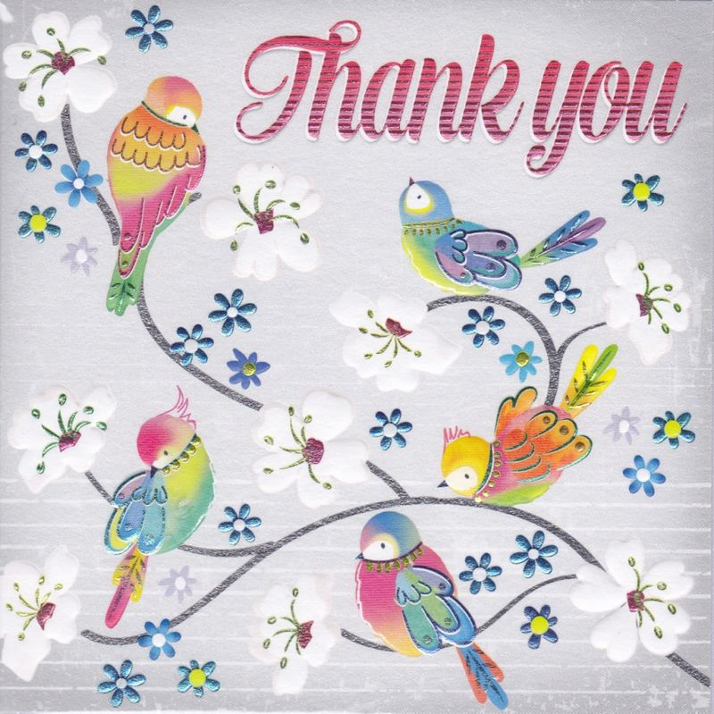 birds  blossom thank you card  karenza paperie