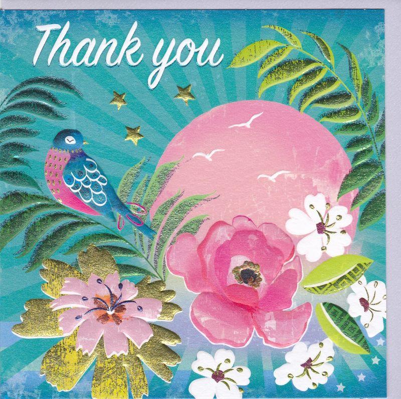 bird  sun thank you card  karenza paperie