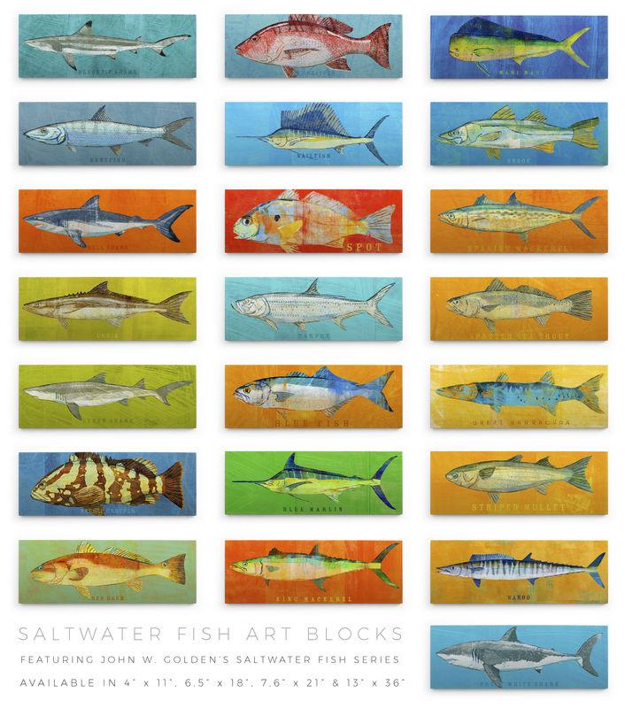 Saltwater Fish Series